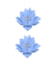 Baby Floral Clips - Bluebird