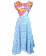 Adult Dinosaur Gingham Dress